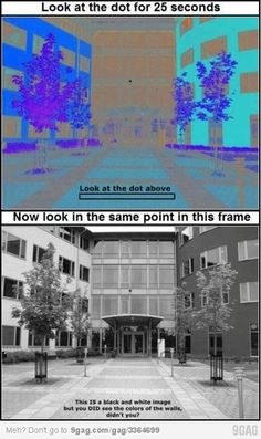 Mind blown <<I kept my eyes still and could see it perfectly! As soon as you move your eyes it goes back to black and white. Insane.