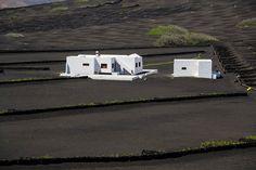 Atrapados por la imagen: Lanzarote ...... Tierra de volcanes