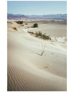 AMERICAN LIFE — 9. Death Valley National Park, Californie