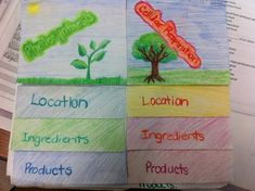 Cellular respiration google search the biology classroom cellular respiration foldable ccuart Choice Image