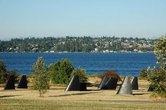 Magnuson Park is a great park for both people and pets