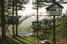 The Cinder Cone : construire sa maison dans les arbres