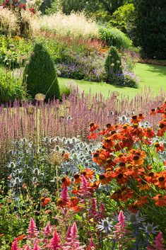 View photos of RHS Garden Harlow Carr in Harrogate, Yorkshire / RHS Gardening