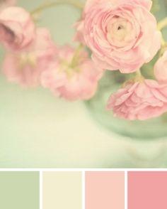 Roses Nuance de vert et de rose
