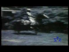 Haras Porto Azul - Visita à Fazenda JB 1977 - Mangalarga Marchador