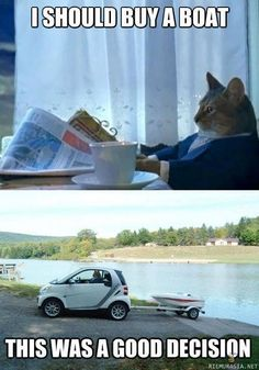 I should buy a boat ... This was a good decision ... #cat