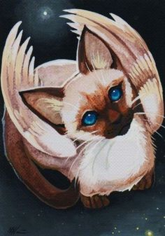 Siamese Cat Ginger- has one kitten,Mist. is a furwing. can hypnotize and turn her claws into stone. Siamese Cats, Cats And Kittens, Gato Angel, Unique Cats, Artist Portfolio, Pet Costumes, Beautiful Cats, Mythical Creatures, Dog Art