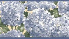 Borders to 7 inches wide Hydrangea Wallpaper, Wallpaper Borders
