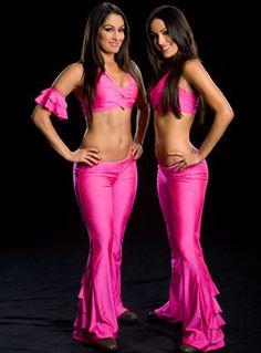 wwe divas the bella twins nikki & brie