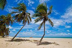 Perobas Beach - Touros, Rio Grande do Norte