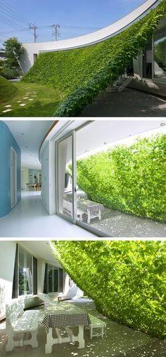 ideas for backyard shade structure vines Green Architecture, Landscape Architecture, Landscape Design, Dream Garden, Home And Garden, Outdoor Spaces, Outdoor Living, Shade Structure, Vertical Gardens