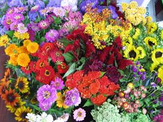 noreen at earth blossoms has the most gorgeous flowers!