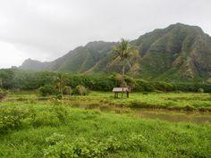 Sus paisajes son imán para Hollywood; muchas escenas de series y películas se han grabado en #kualoaranch … Parque Jurásico, Perdidos, Hawai 5-0, Godzila, Windtalkers…  #hollywood #cinema #series #jurassicpark #lost #godzilla #windtalkers #hawaiifive0 #rodaje #oahu #hawaii #adventurecrew #gohawaii