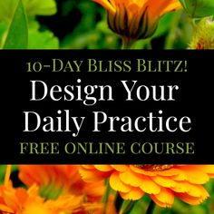 This free/donations accepted online course uses a permaculture design process to help you claim space for new healthy patterns and clear out stagnant energy so you can get super creative! Taught by @foodnotlawns author/founder @heatherjoflores  start anytime! Heatherjoflores.com/dailypractice or follow the link in our bio to see all of our online courses. Theyre free!!!! Permaculture Design, Lawns, Design Process, Online Courses, Author, Teaching, Patterns, Space, Healthy