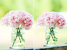 Carnations in Mason jar