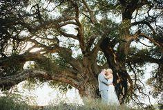 Oak Tree   Bvaphoto   Brent Van Auken   Wedding