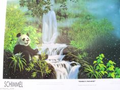 SCHIM SCHIMMEL- PANDA'S PARADISE - POSTER  PRINT 36X24