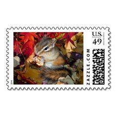 >>>Are you looking for          chipmunk's stamp           chipmunk's stamp This site is will advise you where to buyThis Deals          chipmunk's stamp Here a great deal...Cleck Hot Deals >>> http://www.zazzle.com/chipmunks_stamp-172571874314819020?rf=238627982471231924&zbar=1&tc=terrest