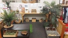 reggio set up Classroom Layout, Classroom Organisation, New Classroom, Classroom Setting, Classroom Design, Classroom Decor, Preschool Decor, Preschool Rooms, Preschool Classroom