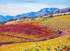 Vineyard Tapestry by Timothy Dixon, Oil, 18x24