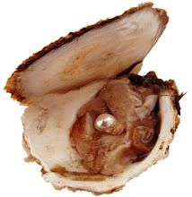 Did you know that an oyster was not injured does not produce pearls? Pearls are a healed wound. Pearls are the product of pain, resulting from the entry of a foreign substance or undesirable within. Jewel Of The Seas, Summer Paradise, Grain Of Sand, South Sea Pearls, Simple Elegance, Sea Shells, Food, Creatures, Jewels