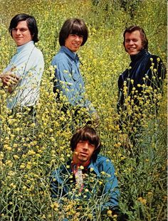 The Seeds - The Seeds were an American rock band. The group, whose repertoire spread between garage rock and acid rock, are considered one of the pioneers of punk rock.