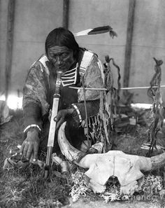 he Sioux tribe was actually made up of three divisions of seven tribes. This is also known as the Seven Council Fires (Oceti Sakowin in the Sioux language) or the Great Sioux Nation. They speak four different dialects of the Sioux language. Native American Photos, Native American Tribes, Native American History, American Indians, Native Indian, Native Art, Blackfoot Indian, Indian Tribes, Indian Man