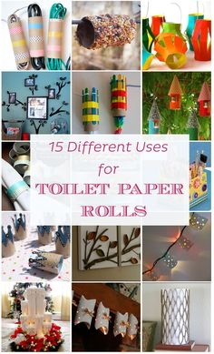 If there's something a house never runs out of are toilet paper rolls, and depending on the number of people living in the house the amount can be quite substantial.