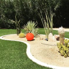 Bauer Orange Orb stands out against a desert garden. Available at bauerpottery.com