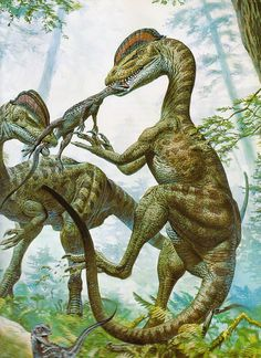 Back to Hallett, and here two Dilophosaurus struggle over an unfortunate Scutellosaurus. | Love in the Time of Chasmosaurs: Vintage Dinosaur Art: De Oerwereld van de Dinosauriërs - Part 1