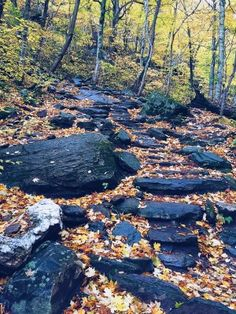 This is your perfect fall Vermont vacation guide. A no stress guide to seeing all the pretty sights without having to stick to a schedule.