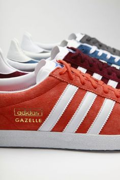 Gazelles! I remember agonizing over gazelles vs campuses in jr. high... ended up with the gazelles in navy and red, still wearing my favorite shoes almost 15 years later!