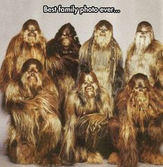 Chewie on this.
