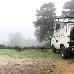 Gorillas in the mist!  #vanagon #vwt3 #camping #wildcamping #vanagon #vwt25 #vanlife #managon #overlandbound #vwlt #adventurecamper  #vw #vanlife #travel #camper #roadtrip #volkswagen #homeiswhereyouparkit #vwbus  #camping #adventure #vwcamper #aircooled #van #vwlove #vintage #wanderlust #vanlifediaries #vwvan #explore #campvibes Vw T3 Camper, Gorillas In The Mist, Volkswagen, Vw Lt, Adventure Campers, Camping, Van Life, Recreational Vehicles, Mists