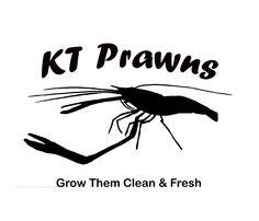 KT Prawns Provides Live Juvenile Freshwater Prawns for Aquaponics. Prawn Farming, Fish Farming, Aquaponics Supplies, Aquaponics System, Raising Farm Animals, Fresh And Clean, Grow Lights, Home Depot, Fresh Water