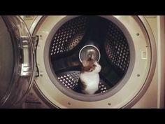 うっとこにある、未来の、あの、ビュイーンってなる、スッゴイ、秘密のカプセル。