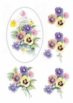 3d fleurs - pansies