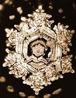 Wellness Goods : Miraculous Messages from Water : How Water Reflects our Consciousness . Photographs by Masaru Emoto Masaru Emoto Water, Glass Bead Game, Water Experiments, Structured Water, Water Molecule, Miraculous, Things To Know, Mother Nature, Messages