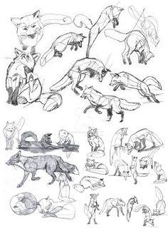 Drawing tips, drawing reference, drawing techniques, drawing ideas, cute dr Drawing Poses, Drawing Sketches, Drawing Ideas, Drawing Tips, Drawing Drawing, Tattoo Sketches, Animal Sketches, Animal Drawings, Drawing Animals