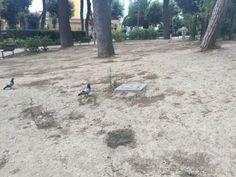 """"""" Il parco Mascagna, già conosciuto come giardini di via Ruoppolo, posto…"""