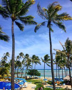 「Good morning from Hawaii! ハワイ!ハワイ!ハワイ!*\(^o^)/* やっぱりハワイだね! お互いにハッピーな1日を過ごそうね!」