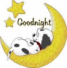 Lady Jam - Good Night