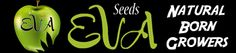 Welcome to Eva Seeds