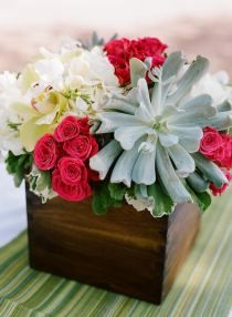 Centerpiece idea- mixed with succulents and red flowers.