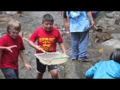 Middle school educational field trip to a stream at North Carolina's South Mountains State Park. Forked River, Mountain States, Field Trips, State Parks, North Carolina, Middle School, How To Plan, Education, Secondary School