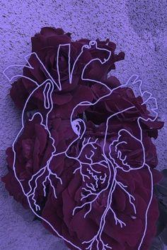 flowers, heart, and red image Lizzie Hearts, Addison Montgomery, Six Of Crows, Anatomical Heart, Purple Aesthetic, Aesthetic Light, Sakura Haruno, Purple Rain, Homestuck