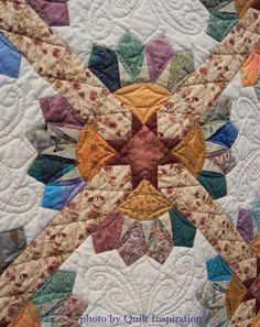 Birds in the Garden by Margaret Kunz.  Dresden plate quilt pattern by Edyta Sitar.  Photo by Quilt Inspiration.  2015 Springville (Utah) quilt show.