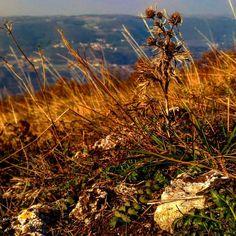 #landscape #landscapephotography #sunsets #autumn #autumn #colors #ig_allnature #naturephotography #nature #naturephotography #igers #igeritalia #igveneto #igclub #picture #mountains #mountainlife #veneto #igpic #naturelover #instagood #naturepic #igmyshot #november #ig_sky #ig_sky #landscaper #photography  #likeitaly #igvicenza