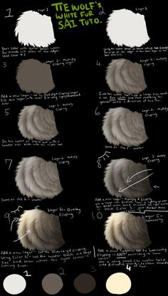 Tiewolf's White Fur SAI Tutorial by TieWolf on deviantART