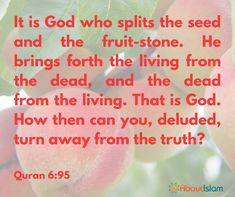 How can you turn away from Allah?